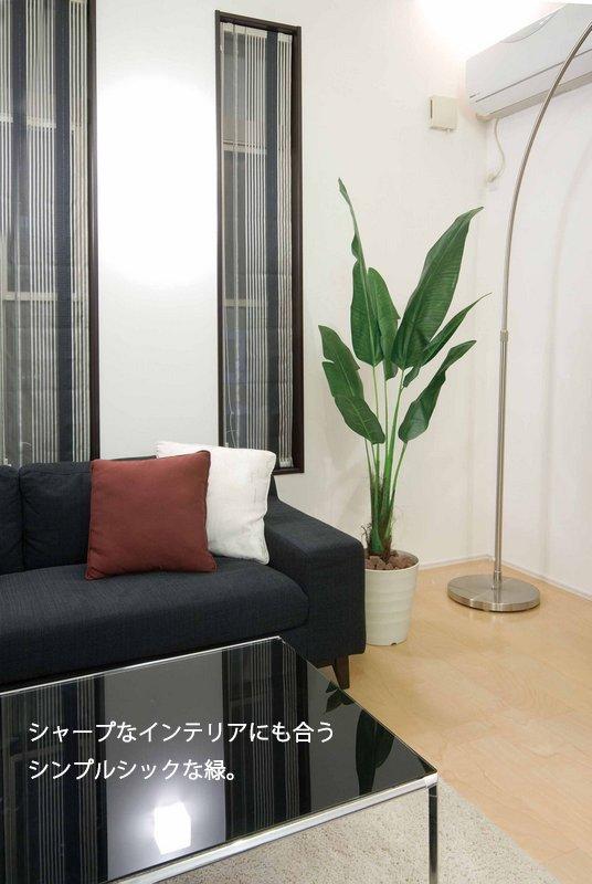 《光触媒観葉植物》グレープツリー1.5〔フロアタイプ(ハイサイズ)〕