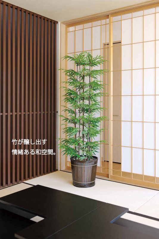 《光触媒観葉植物》黒竹1.0〔フロアタイプ(ハイサイズ)〕人気作品