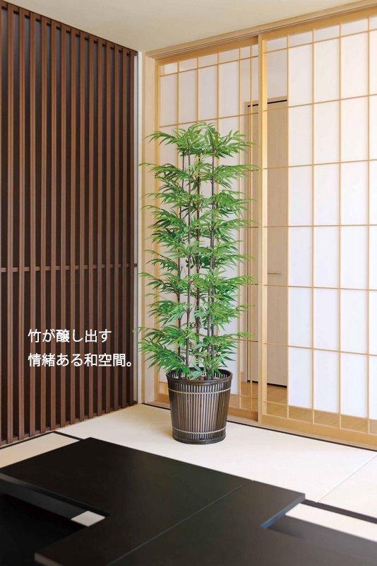 《光触媒観葉植物》青竹1.8〔フロアタイプ(ハイサイズ)〕