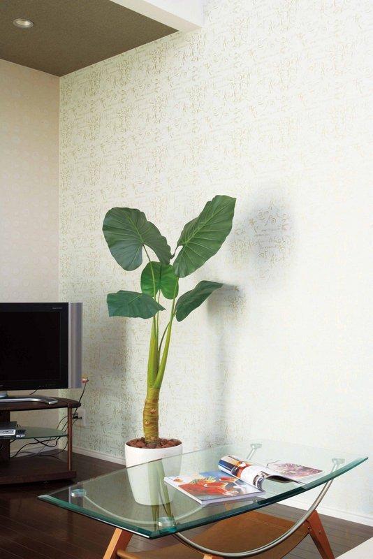 《光触媒観葉植物》くわず芋M1.6〔フロアタイプ(ハイサイズ)〕人気作品