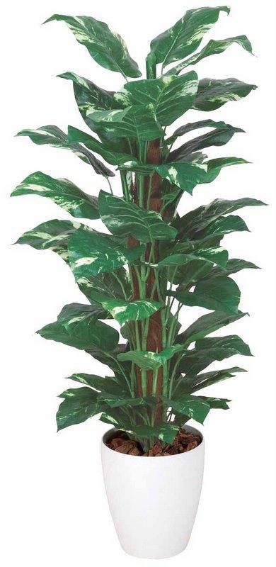 《光触媒観葉植物》ポトス1.2〔フロアタイプ(ミドルサイズ)〕