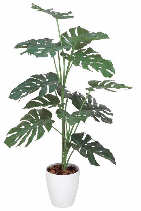 《光触媒観葉植物》モンステラ1.2〔フロアタイプ(ミドルサイズ)〕人気作品