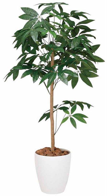 《光触媒観葉植物》パキラトピアリー1.5〔フロアタイプ(ミドルサイズ)〕
