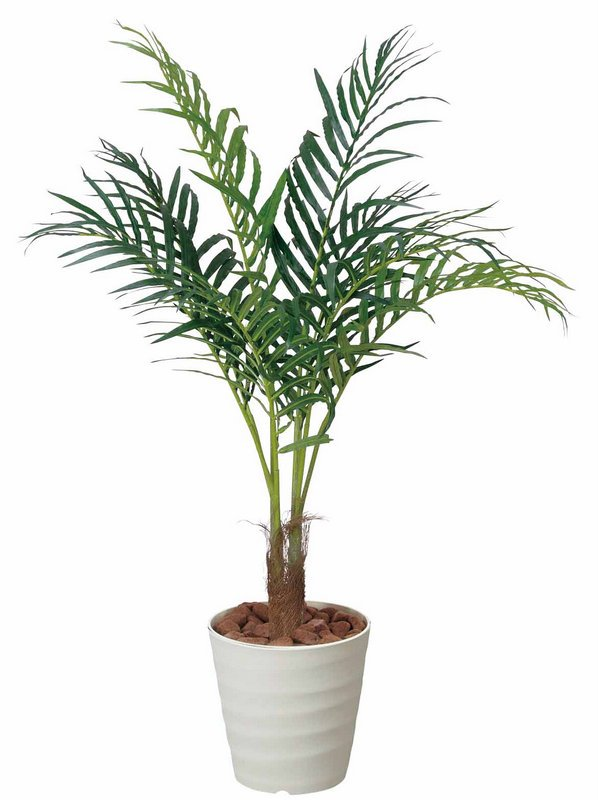 《光触媒観葉植物》アレカパーム1.15〔フロアタイプ(ミドルサイズ)〕
