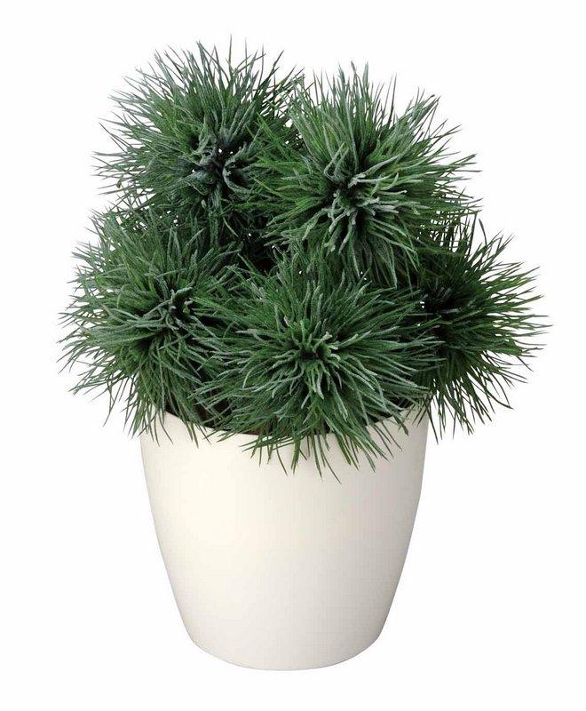 《光触媒観葉植物》アザミプラント〔フロアタイプ(ミドルサイズ)〕