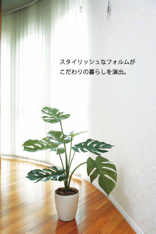《光触媒観葉植物》モンステラ75〔フロアタイプ(ミドルサイズ)〕人気作品