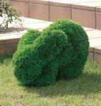 《ガーデングリーン》ウサギS〔ガーデンタイプ〕