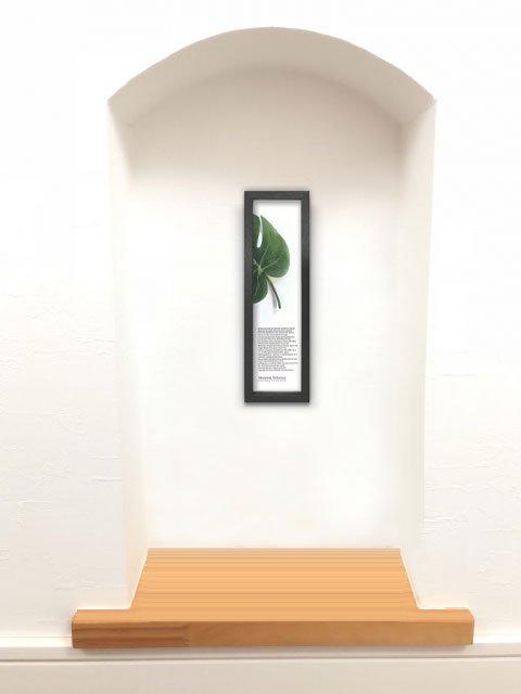 《リーフパネル》ハディアフータン/森のおくりもの モンステラ1(ブラック)(ゆうパケット)