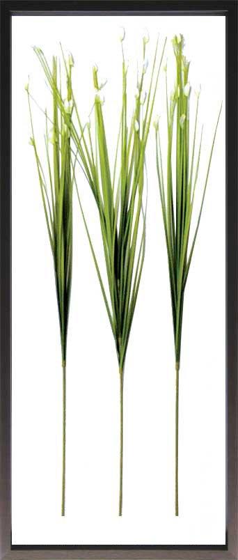《リーフパネル》F-style Frame Flower Grass(フラワーグラス)
