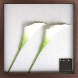 《リーフパネル》F-style Frame Anthurium /white(アンスリウム/ホワイト)