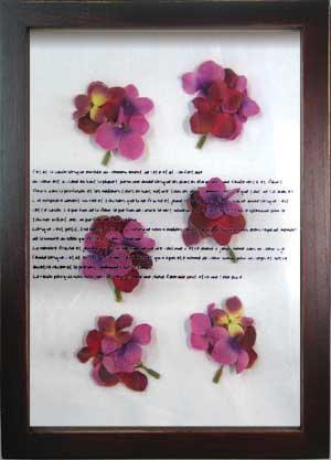 《ハーブフレーム》musee de herbe Hydrangea Pink(ミュゼ ド エルブ ハイドレインジャ/あじさい ピンク)