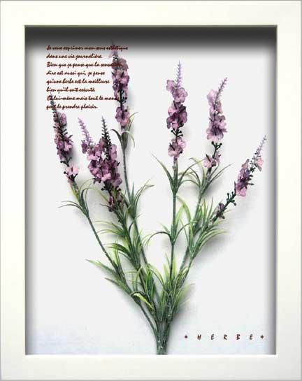 《ハーブフレーム》Herbe Frame Lavender2(ハーブフレーム ラベンダー2)