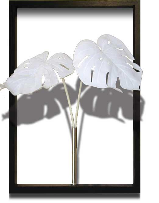 《リーフパネル》エフスタイル ツイーニー モンステラ デリシオサ ホワイト