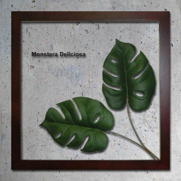 《リーフパネル》Forest Deco Monstera Deliciosa2(モンステラ デリシオサ)