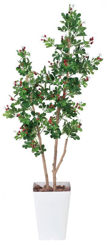 《光触媒観葉植物》ハックルベリ−1.35〔フロアタイプ(ミドルサイズ)〕