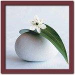 《アートフレーム》Amelie VUILLON アメリ ヴイヨン Flower and pebble(フラワー アンド ペブル/花と玉石)