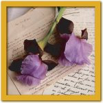 《アートフレーム》Celine SACHS JEANTET Two Irises(ツー アイリシーズ/2つのアヤメ)