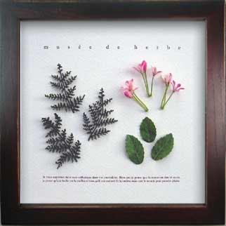 《ハーブフレーム》Musee de herbe Herbe 1(ミュゼ ド エルブ ハーブ)(ゆうパケット)