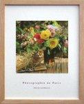 《フレンチフォトグラフィー》フォトグラフィー・ド・パリ バンチ オブ フラワーズ(花束)(ゆうパケット)