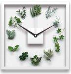 《時計》Design Clock Kusa tokei(デザイン クロック くさとけい)