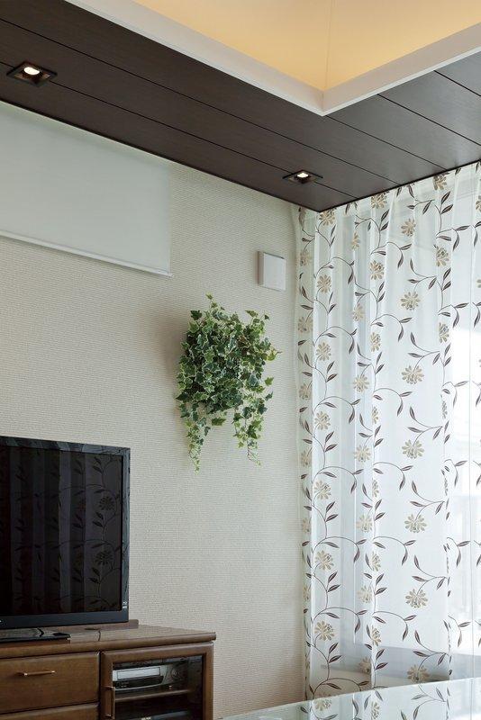 《エコウォール》壁面緑化アイビ-/光触媒〔壁掛けタイプ〕