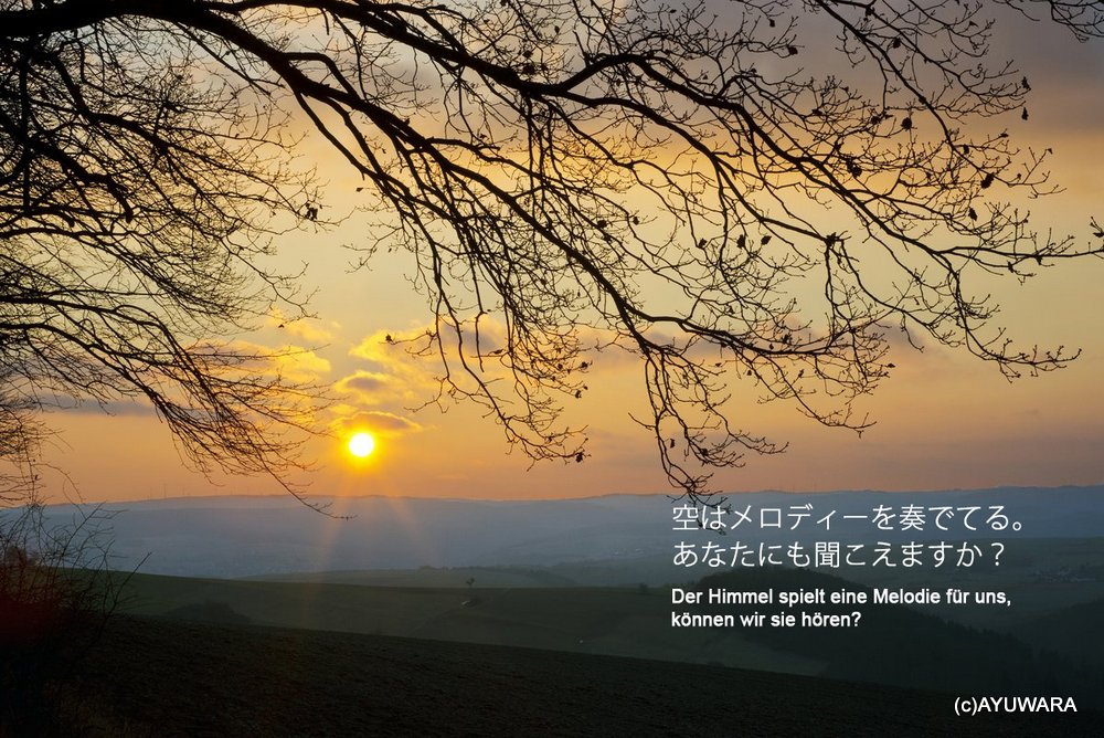 《アートフォトフレーム》日没(Sunset 2013)〔ドイツ写真家/ガビー・ゾマー〕