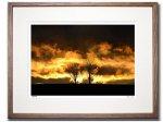 《アートフォトフレーム》太陽の火(Sunfire)〔ドイツ写真家/ガビー・ゾマー〕