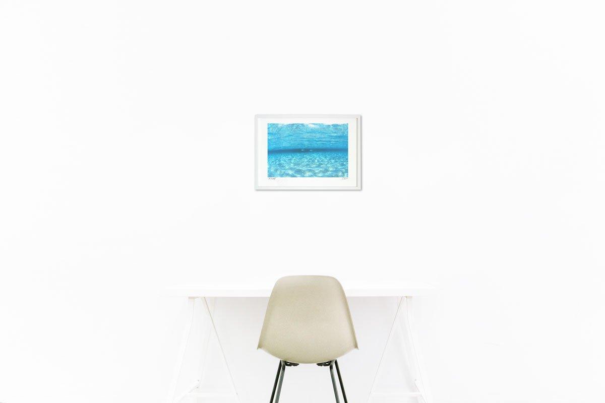 《アートフォト》透明な海を泳ぐ魚(撮影地:モルディブ)(レンタル対象)