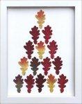 《リーフフレーム》リーフフレーム Oak Leaf オーク リーフ