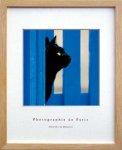 《アートフレーム》【ゆうパケット】フォトグラフィー ド パリ Black Cat くろねこ