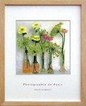 《アートフレーム》【ゆうパケット】フォトグラフィー ド パリ Flowers フラワー
