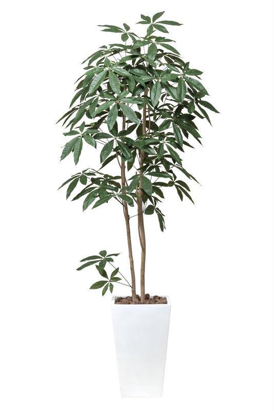 《光触媒観葉植物》ア-トパキラ1.8〔フロアタイプ(ハイサイズ)〕人気作品