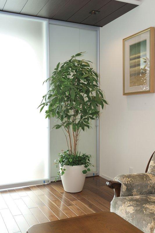 《光触媒観葉植物》パキラトピアリー1.25〔フロアタイプ(ハイサイズ)〕人気作品