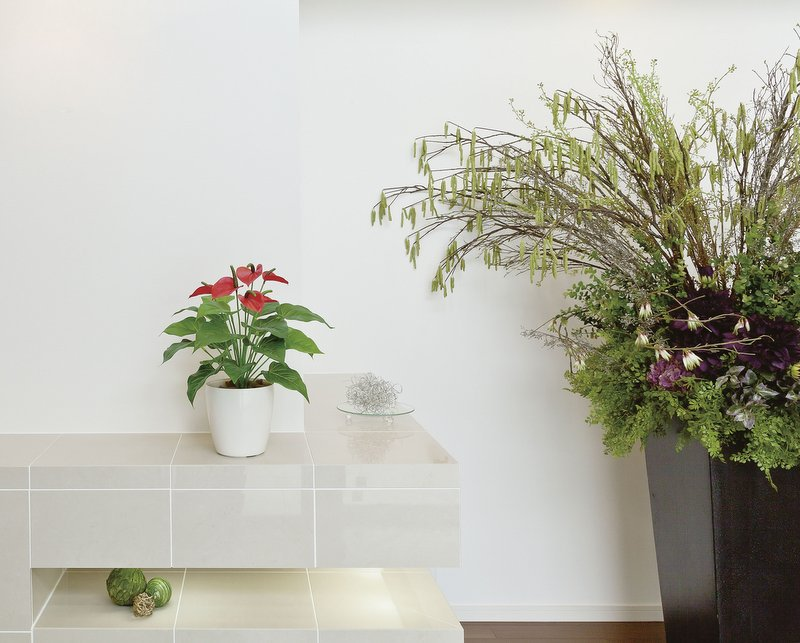 《光触媒観葉植物》フレッシュポトスM〔テーブルタイプ〕人気作品