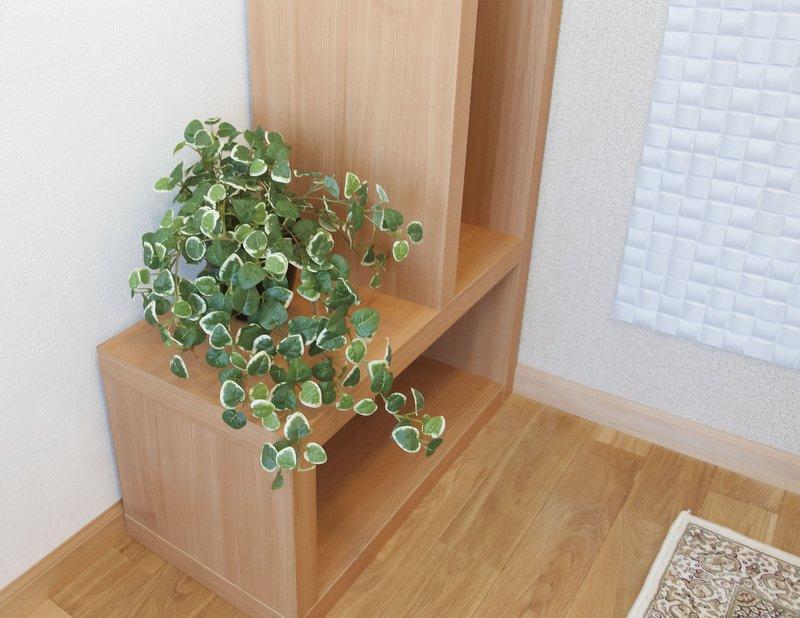 《光触媒観葉植物》ミムラ〔テーブルタイプ〕ギフトで人気