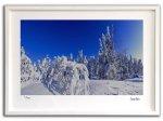 《ジクレー版画》北極圏の風景001 アラスカ〔オーロラ風景写真家/堀田東〕