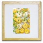 《ジクレー版画》Pumpkins1 (カボチャ1)〔竹内陽子〕/リビングを華やかに彩るインテリア。絵画のようなフラワーフォト