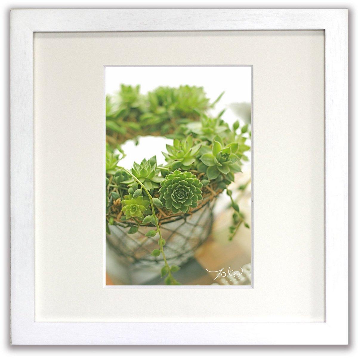 《ジクレー版画》Green Grow (グリーングロウ)〔竹内陽子〕/リビングを華やかに彩るインテリア。絵画のようなフラワーフォト