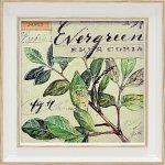 《絵画》【ゆうパケット】ミニゲル アートフレーム アンジェラ スターリング「エバーグリーン ブランチ」