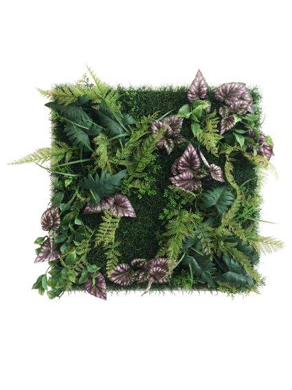 《プラントフレーム》Wall Plants frame  シダ&ベコニア