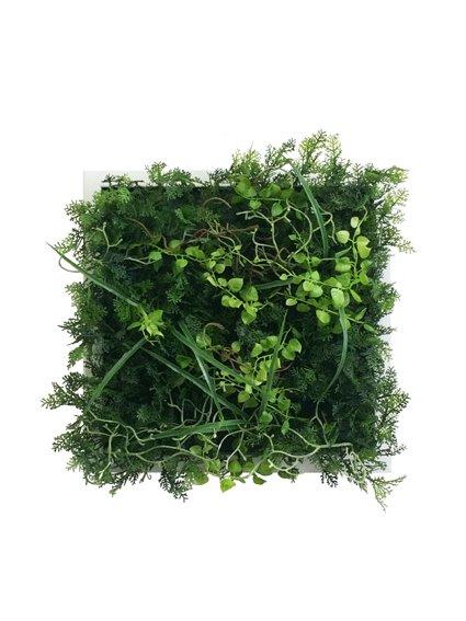 《プラントフレーム》Wall Plants frame  ワイルドグリーン