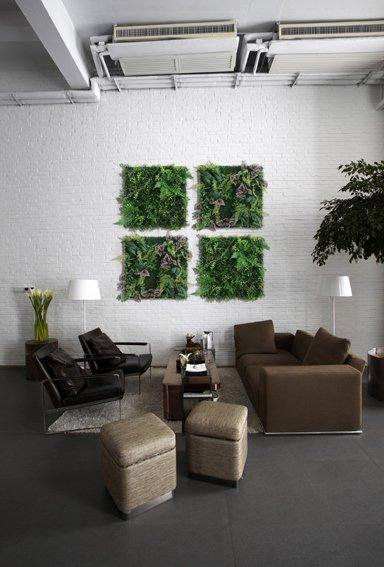 《プラントフレーム》Wall Plants frame  ベコニアミックス