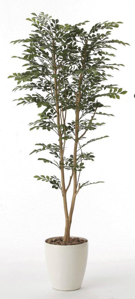 《光触媒観葉植物》ゴールデンツリー1.6〔フロアタイプ(ハイサイズ)〕