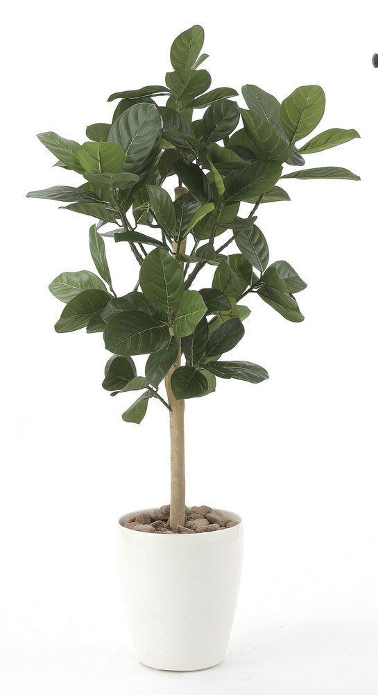 《光触媒観葉植物》パンの木90〔フロアタイプ(ハイサイズ)〕