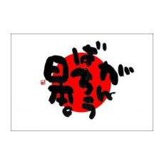 『がんばろう日本。』タトゥシール/日の丸をつけて日本を応援しよう!