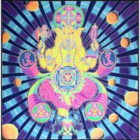 <img class='new_mark_img1' src='https://img.shop-pro.jp/img/new/icons20.gif' style='border:none;display:inline;margin:0px;padding:0px;width:auto;' />【SPACE TRIBE】XQ70:UV BANNER GANESHA
