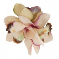 <img class='new_mark_img1' src='//img.shop-pro.jp/img/new/icons20.gif' style='border:none;display:inline;margin:0px;padding:0px;width:auto;' />【COLLECTIF】AALIYAH ORCHID HAIR FLOWER-CREAM