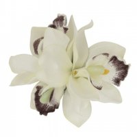 <img class='new_mark_img1' src='//img.shop-pro.jp/img/new/icons3.gif' style='border:none;display:inline;margin:0px;padding:0px;width:auto;' />【COLLECTIF】AALIYAH ORCHID HAIR FLOWER-WHITE