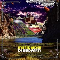 DJ WILD PARTY「HYBRID MIXER」MIX CD