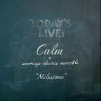 CALM「MILESTONE」CD